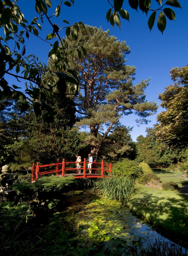 abbeyleix hotel manor japanese gardens